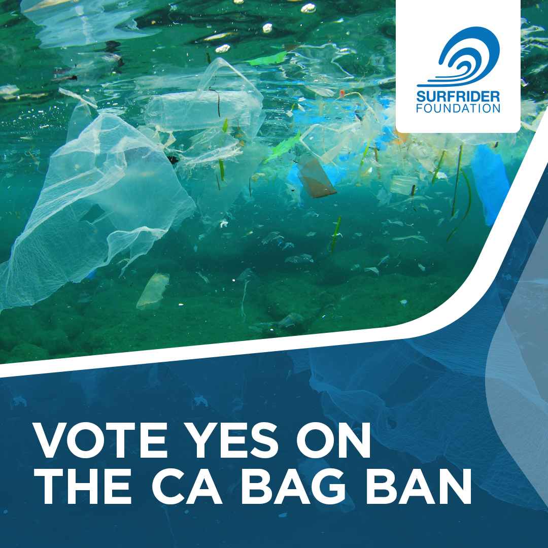 Vote on the plastic bag ban